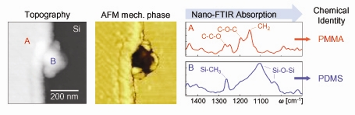 Nano-FTIR chemically identifies nanoscale sample contaminations, as shown in the AFM images of a polymethylmethacrylate (PMMA) film on a silicon surface