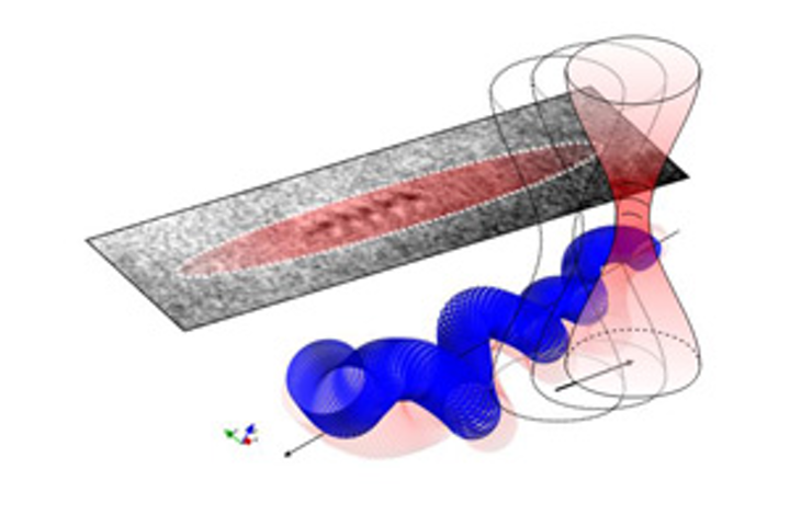 With the optical tweezers, a laser beam holds a bacterium in place and records its movements in detail