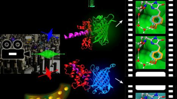 Content Dam Bow Online Articles 2014 07 Molecular Movies Web