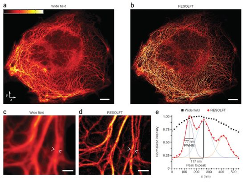 Super-resolution microscopy of large fields in living cells