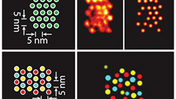 Method pushes super-resolution microscopy to distinguish individual