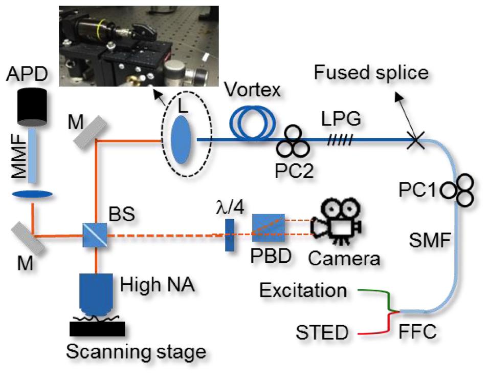 Content Dam Bow En Articles Print Volume 9 Issue 7 Superresolution Microscopy All Fiber Illumination Brings Superior Stability To Sted Leftcolumn Article Thumbnailimage File