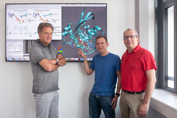 (L-R) Klaus Gerwert, Till Rudack, and Carsten Kötting have investigated switch proteins for years; for instance, the Ras protein depicted here.
