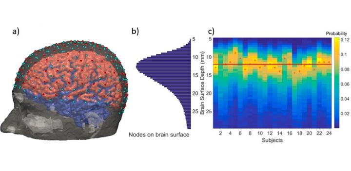 The high-density diffuse optical tomography system with 158 sources (red) and 166 detectors (cyan) shows the surface of the brain in pink and blue (a); a histogram of brain surface depth across 24 subjects (b) with brain surface depth probability distribution for each subject (c) are also shown. The red stars mark the maximum probability for each subject, while the red line is the most probable depth across all subjects (12.5 mm), highlighting the need of improving both image quality and spatial resolution.